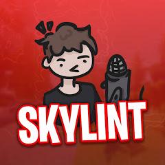 SkyLint