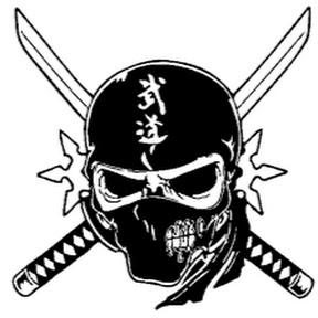 Ninja Assasin X