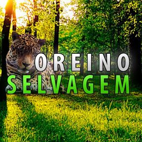 O Reino Selvagem