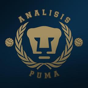 Análisis Puma