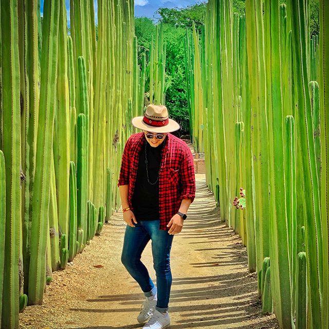 Interesante saber de la cantidad de plantas que existen en este jardin #visitoaxaca #oaxaca