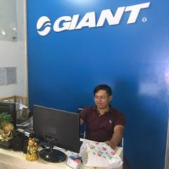 Bán Xe Đạp Đua Rẻ Nhất Việt Nam