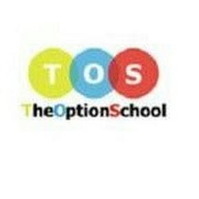 THE OPTION SCHOOL