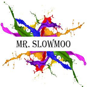 Mr Slowmoo