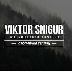 Віктор Снігур