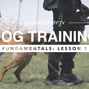 Obedience Training - Topic