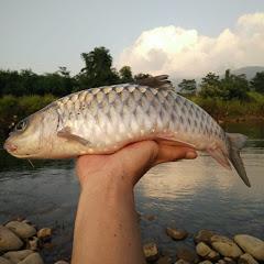 Câu cá và Trải nghiệm