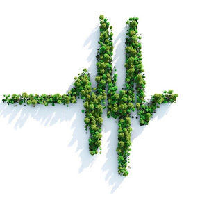 santé-environnement développement durable