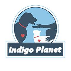 Indigo Planet