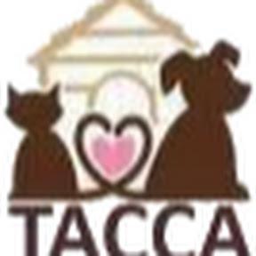 寵物溝通自學-台灣動物溝通關懷協會