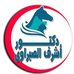 دكتور أشرف الصبراوي - Dr. Ashraf Alsabrawy