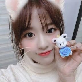 Random Yujin