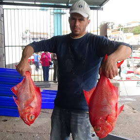 Jose Sousa Fishing&Pesca