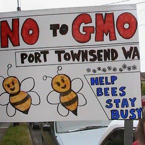GMO Free News
