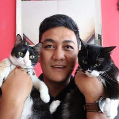 Nuansa Kucing