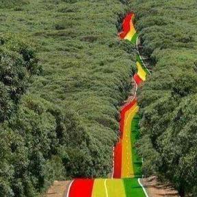 Ethio Zare ኢትዮ ዛሬ