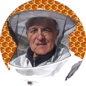 Пчелы начинающим