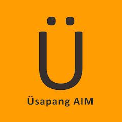Üsapang AIM