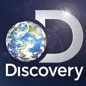 Programación Discovery