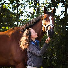 MIK stables