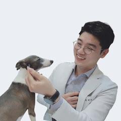 설채현의 DOG설TV