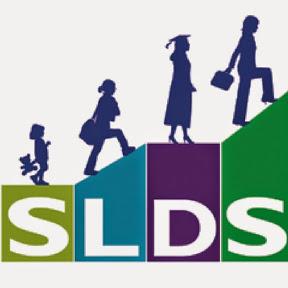 SLDS Grant Program