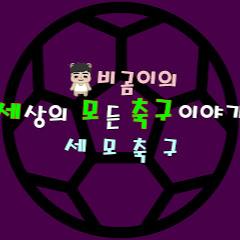 세모축구 - 비곰이의 세상 모든 축구이야기