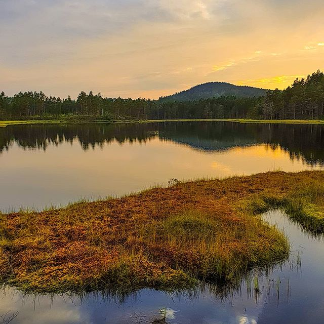 #vegårshei #norge #norway #norway2inspire #nrknatur #sorlandetno #tvedestrandsposten #agderposten #nrksørlandet #mittnorge #norges_fotografer #lory_norway #norgejpg #yrbilder #godmorgennorge #bestofnorway #norskefototalenter #raw_norway #norgeimitthjerte #look_norway #got__greatshots #raw_reflection #world_bestsky #planet_earth_shots #everything_imaginable #bns_earth #bestcaptureglobal #lovely_earthshotz #fotofanatics_nature_ #natura_love_