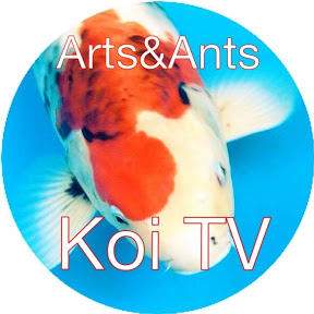 Koi TV
