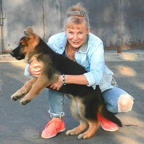 German Shepherd and Dog breeds