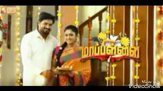 Mappillai Vijay Tv Serial( March 20 to 31)Review