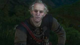 The Witcher 3: Wild Hunt- 4th wall farewell