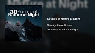 Sounds of Nature at Night