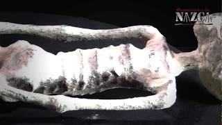 MOMIA DE NAZCA || THE ALIEN NAZCA MUMMY