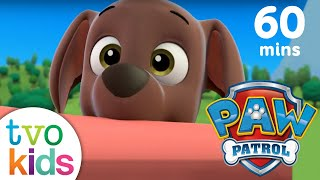 Armoured Vehicles Latin America ⁓ These Paw Patrol Youtube