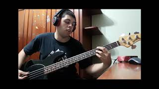 Rolling In The Deep - Adele (Bass Cover)
