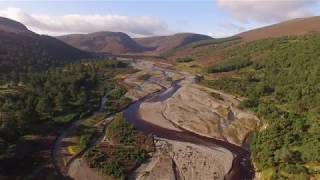 Cairngorms Nature - woodland in the Cairngorms National Park