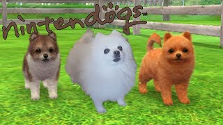 YTPMV - Nintendogs Shopping Theme