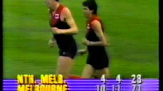 1987 1st Elimination Final - North Melbourne vs Melbourne