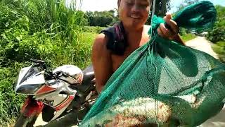 In manipur Catching a big fish