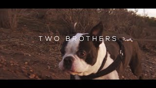 Vibe - Two Brothers Music Documentary (A visual piece by Garvin Ha)