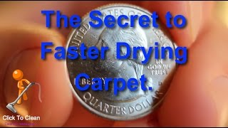 The Secret to Faster Drying Carpet