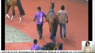 Singapore Horse Racing Live to day 22-3-2019