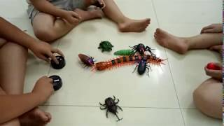 Nerf gun battle the scorpion, worm, turtle