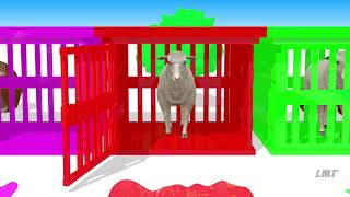 Learn Colors with Farm Animals Learn Farm Animals Names & Sounds For Kids