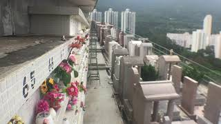 View from Brenda José Ossuary in n Holy Cross Catholic Cemetery 歌連臣角天主教聖十字架墳場 in Chaiwan, Hong Kong