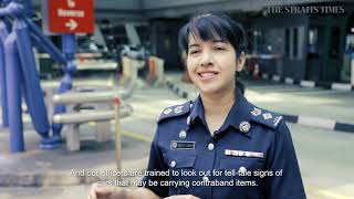 Guardians of Woodlands Checkpoint | Singapore Works | The Straits Times