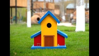 Creative Bird House / How to make / Թռչնի տնակ