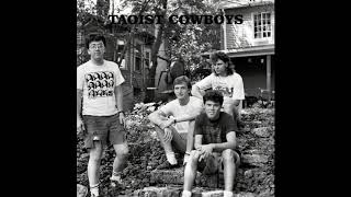 The Taoist Cowboys – Truth In Vision