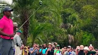Tiger Woods 129 mph SWING SPEED!! 2018 Valspar Championship